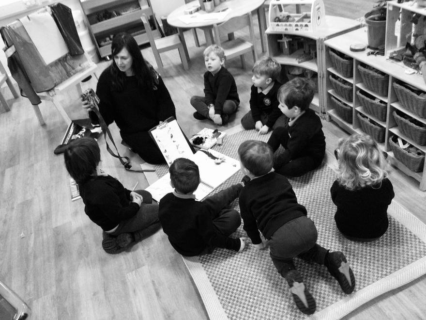 A group discussion about the wildlife camera.