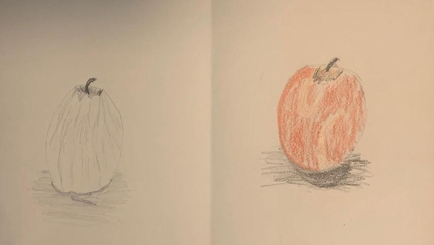 Observational fruit drawing