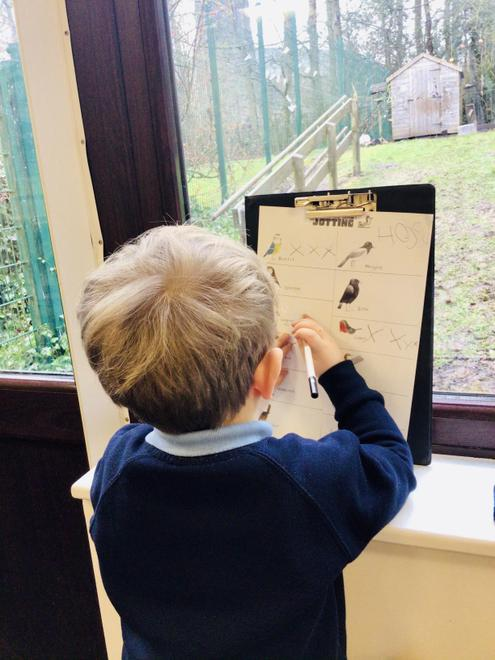 Counting the birds for the RSPB Big Garden Birdwatch.
