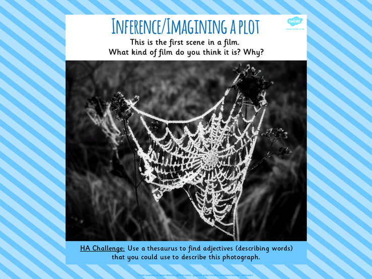 3. Inference/Imagining a Plot.