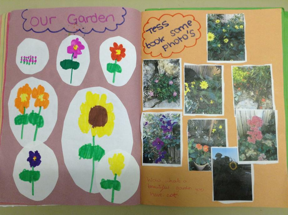 Identifying the plants in our gardens.