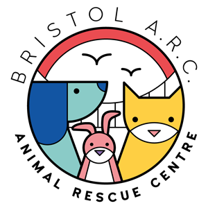 Bristol Animal Rescue Centre (St. Francis)