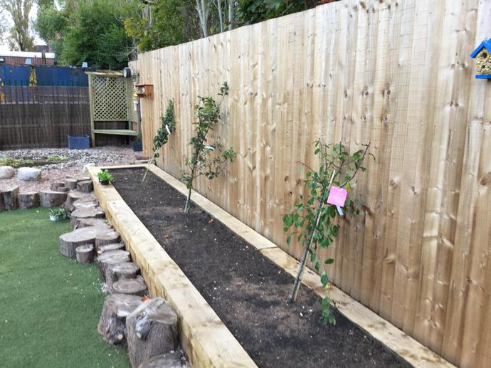 The fruit and vegetable raised bed