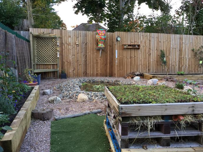 The Bug Hotel beside the pond