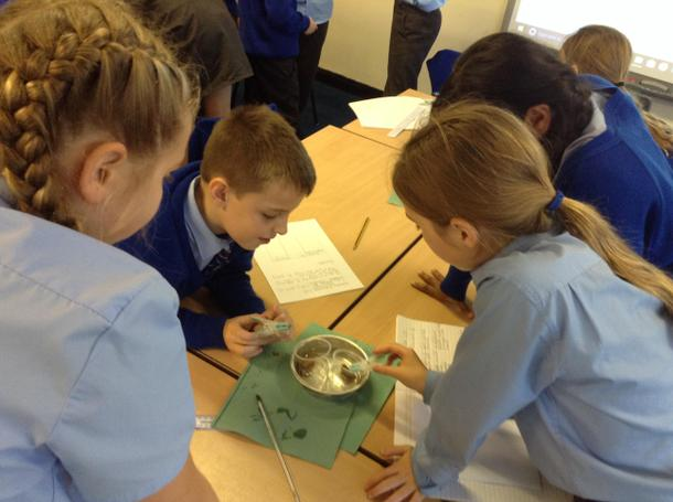 Working Scientifically investigating melting.