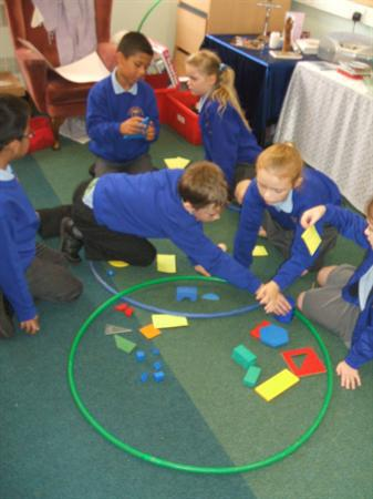 We used Venn diagrams to sort objects.