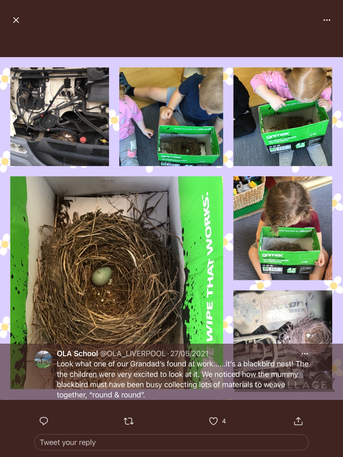 Look how birds build their nests - round & round like a circle  🔘