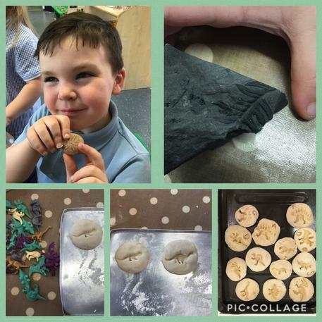 Nursery have been busy learning about fossils today. We looked at some real fossils and found out how they were formed, millions of years ago! We learnt some very big words like 'archeologist' and 'excavation'. Then we made our own fossils using salt dough 👏 well done nursery!