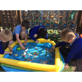 We also began our investigations into life found under the sea.