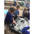 We practised washing hands.