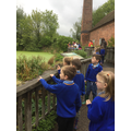 While it 'proved', we visited the pond...