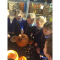 On Thursday we investigated the inside of pumpkins...