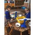 On Wednesday we weighed conkers and pine cones...
