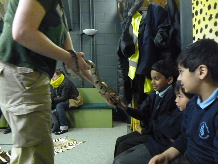 Meeting Mia the snake