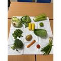 Science- food plants