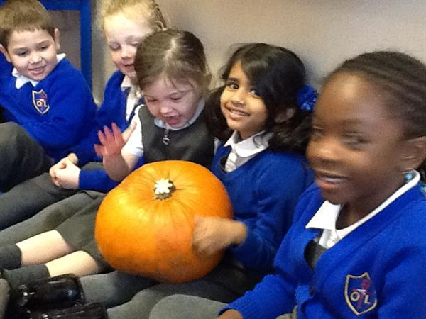 Exploring our pumpkin