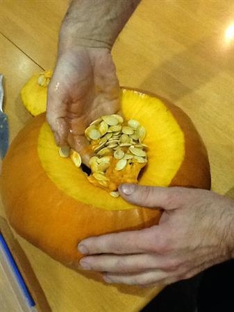 Look at the pumpkin seeds.