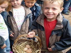 We collected some freshly laid eggs.