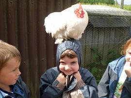 The hens at Money Lane Farm were very friendly!