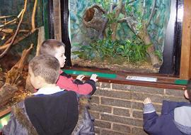 In the Reptile House.