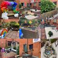 Plants donated to NHS memorial garden