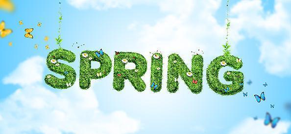 Spring Term 2019