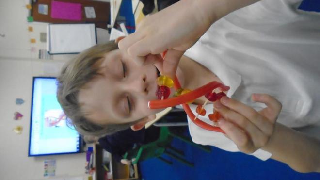 Edible DNA!