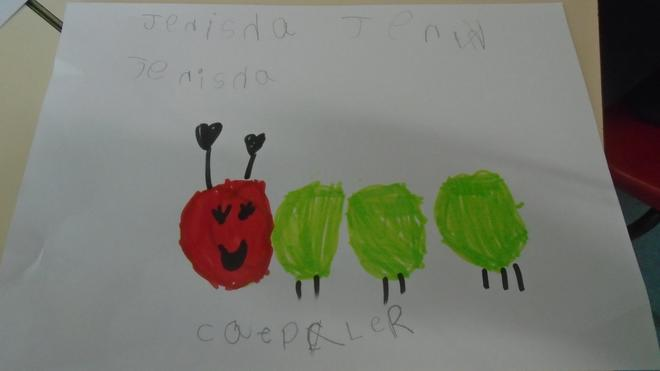 Drawing the Hungry Caterpillar