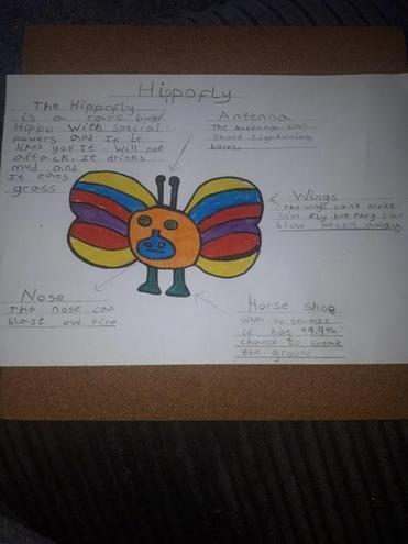 Harley's Hippofly