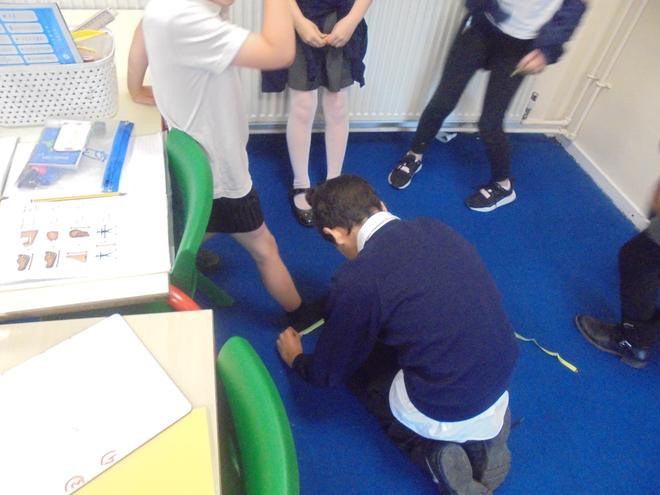 Investigating body facts and body fiction