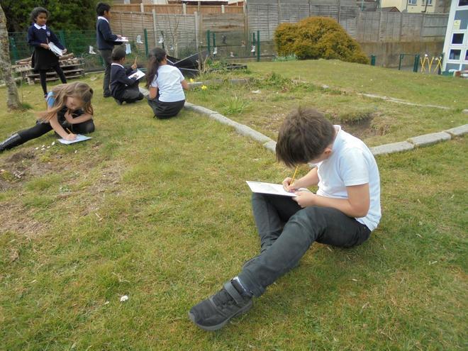 Exploring plants in science
