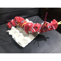 I made a Chinese dragon