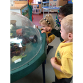 Meeting the class snails