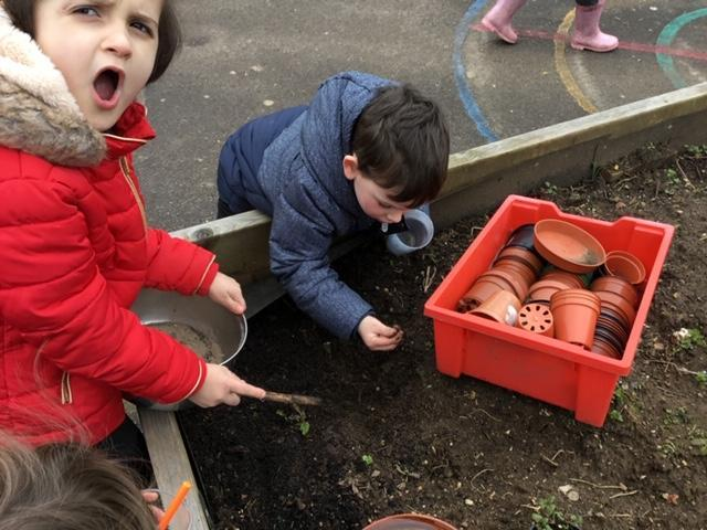Worm hunting for our wormery