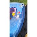 Rainbow bath bomb in the paddling pool