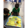 Using Beebots to program