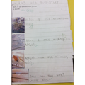 We had fun writing about our Autumn Walk