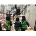Cheeky chimpanzees