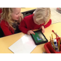 Year 1 have been programming BeeBots using iPads.