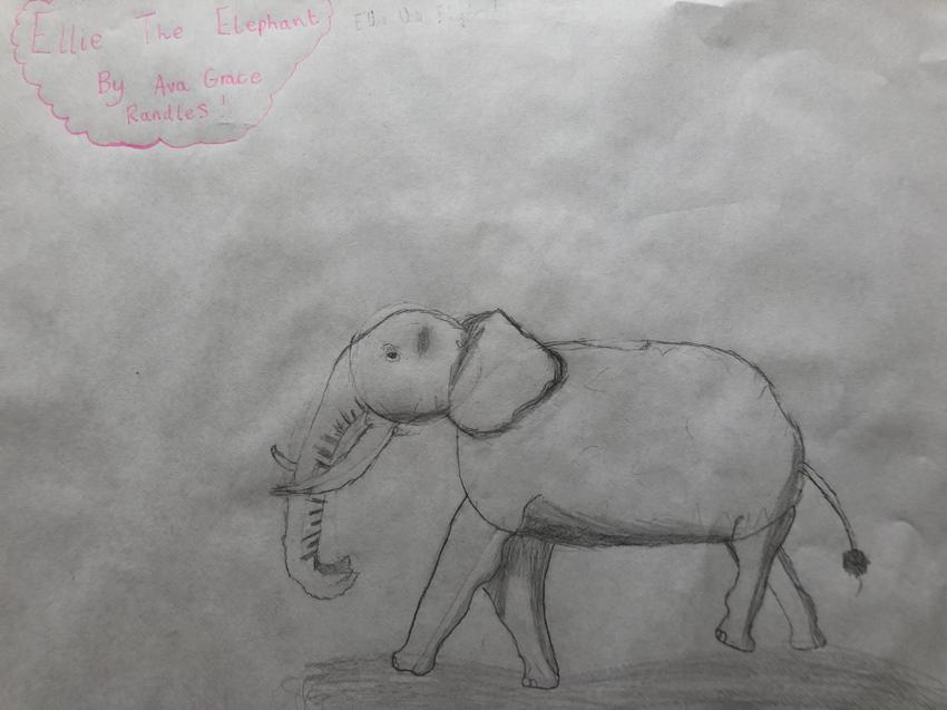 Ava's elephant sketch.