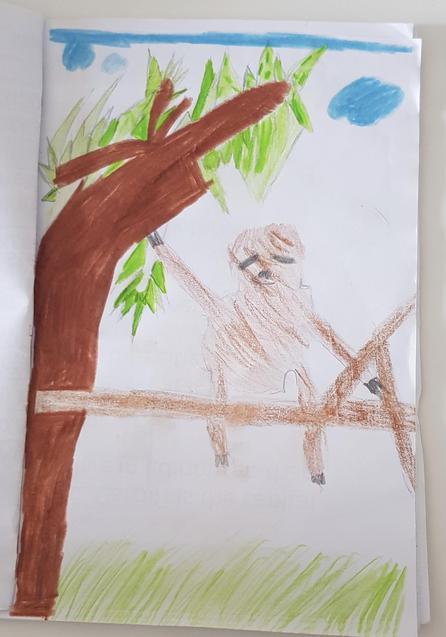 Summer's Sloth