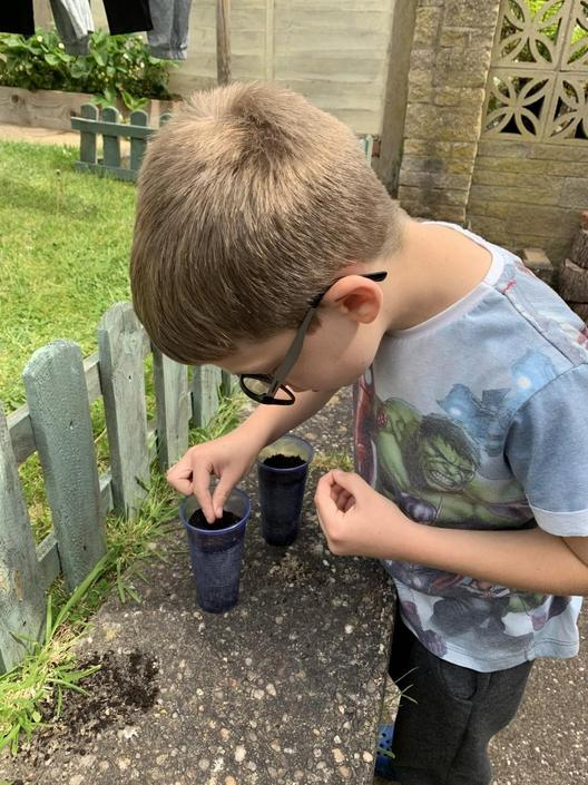 Noah taking care with his planting for his science