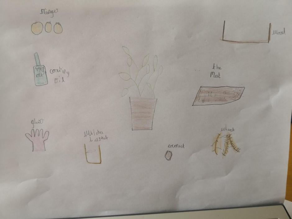 Harry has started some great science work