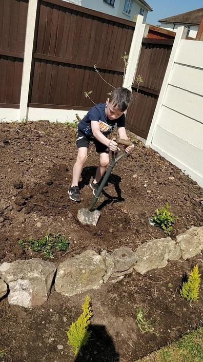 Ryan has been busy in his garden.