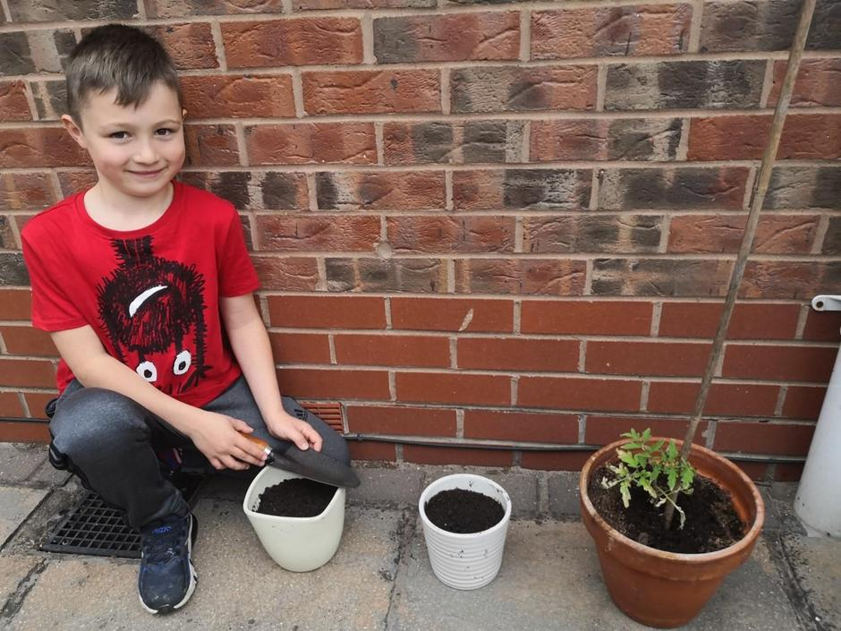 Harry has been busy planting!