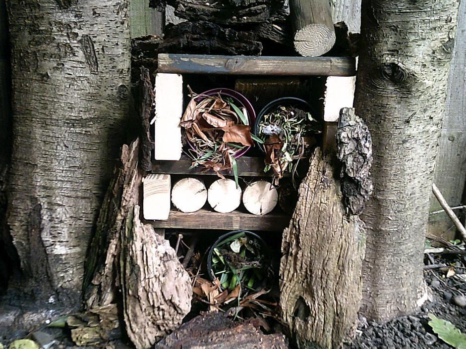 Look at this fantastic bug hotel! I know where I would live if I were a bug!