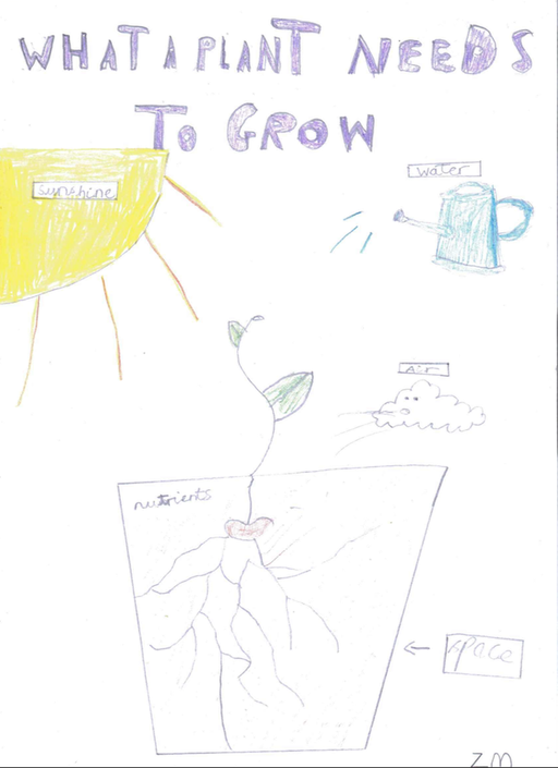 Zach's Science poster - :-)
