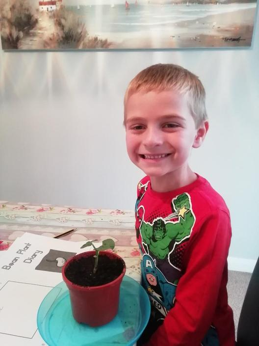 One chuffed Sam with his sunflower!