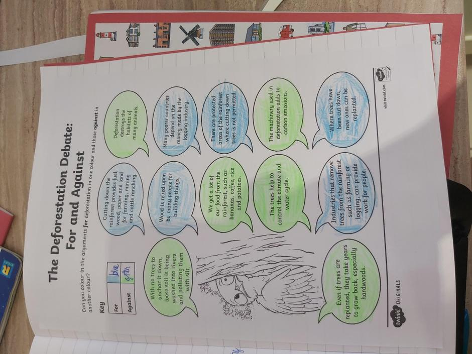 Look at this rainforest debate sheet, fantastic!