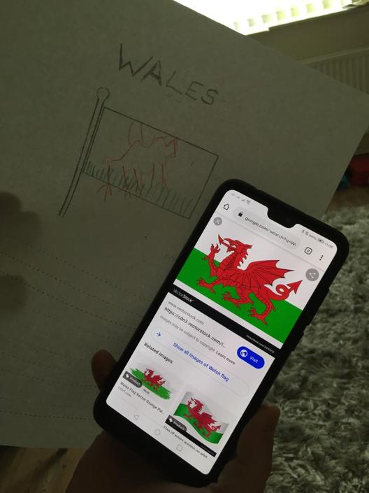 Finnlay has had fun researching facts about Wales!